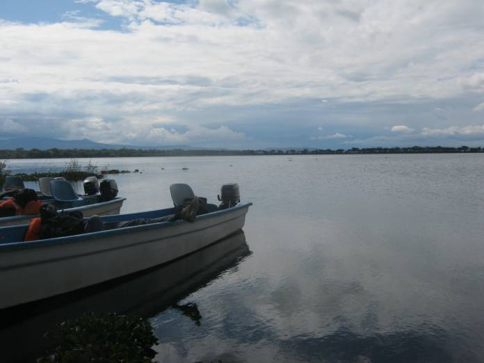 Experts blame the decrease in Lake Victoria water levels on deforestation, encroachment of water towers and climate change among others