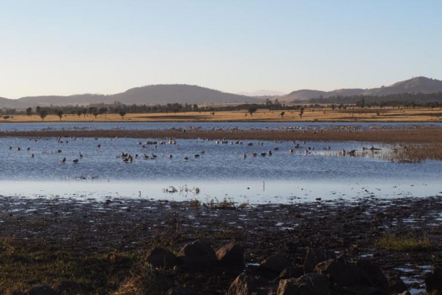 بحيرة شيليليكا تحت خطر الجفاف