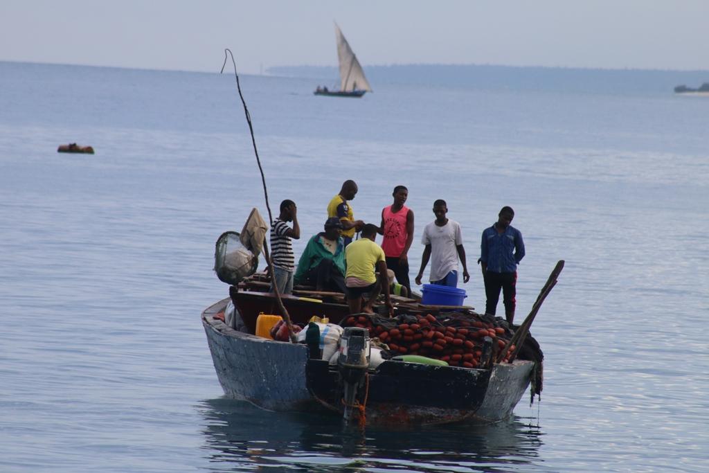 يروي بودكاست قصة روكا المحزنة في بحيرة تنزانيا