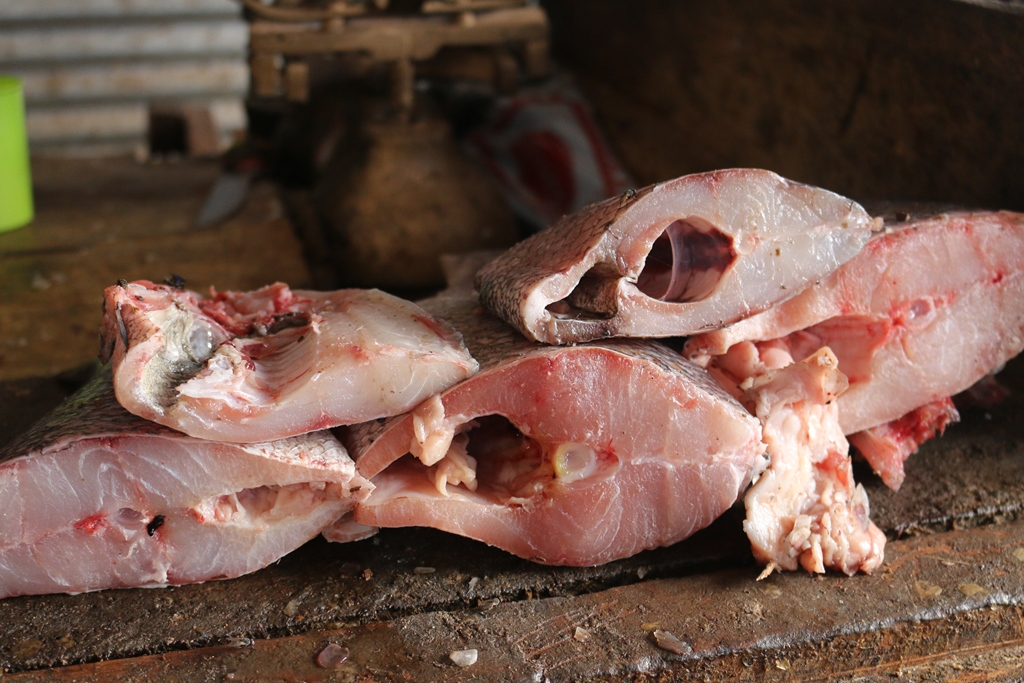 Nile perch threatened in East Africa