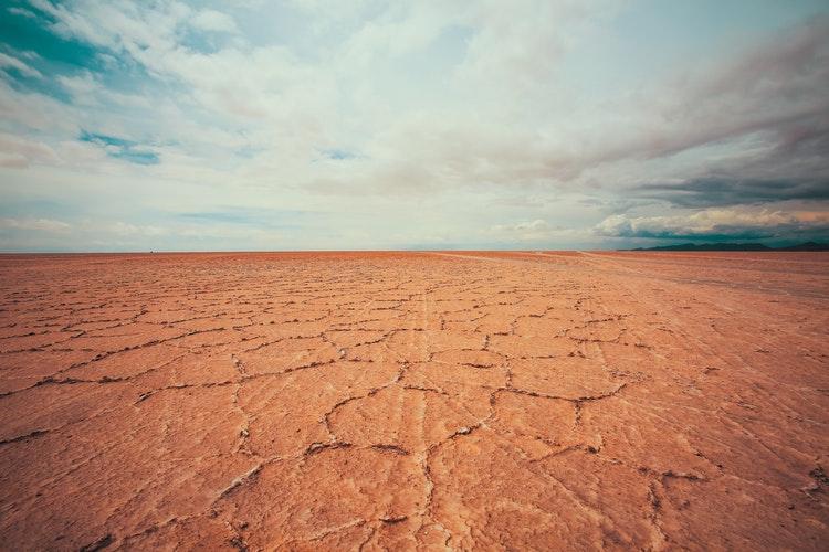 Combating Desertification: Awareness, National Mitigation & Innovation